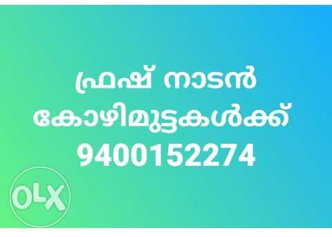 9400152274 Text