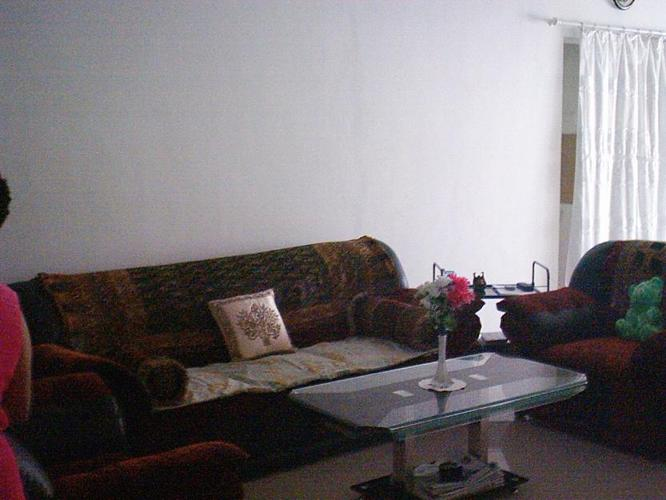 A very decent and nice imported sofa set for sale for sale for Nice sofas for sale