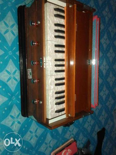 Brown And White Accordion