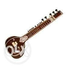 New sitar 6 monthe old gud candican