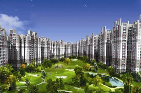 Newly Launched Project - Amrapali Crystal Homes Sector