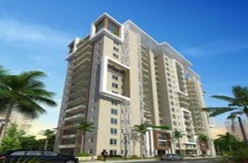 Newly Launched Project - Amrapali Princely Estate