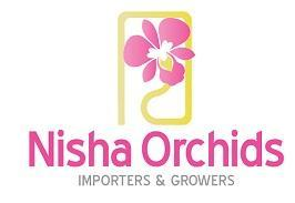 Orchids Plants Imported Thailand