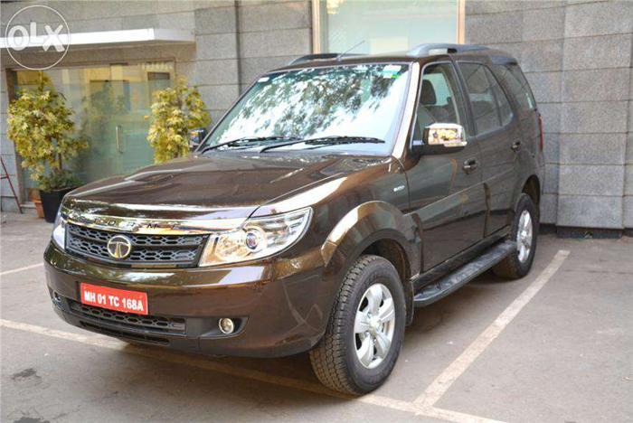 Safari / sumo on road price