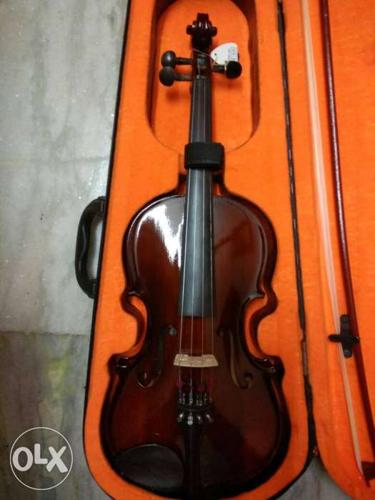 Violin in excellent condition. Fixed price.