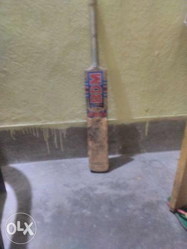Well leather ball cricket bat