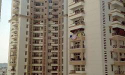 3BHK apartment available for rent at Ememrald Heights, Ramprastha Greens, Vaishali. Stone's throw away from Vaishali Metro station. Great view from each of 3 balconies. Area measuring 1825 sq feet, 3 BHK, 1 store, 3 toilets, Modular Kitchen, Vitrified