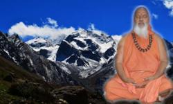 Himalaya Tapovanam provides best Yoga Teacher Training in Rishikesh India.we provide beautiful environment where people from every walk of life can come and practice yoga and meditation and experience ones true self,Content filed under the Our Teachers