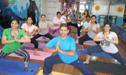 ???: Fitness ???: Yoga yogshala fitness cafe provides yoga, power yoga and meditation classes in panchkula, mohali. power yoga for weight reduction yoga for over all fitness.