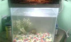 "12""�12""�9"" fish tank and top only 959963.1268"