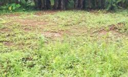 14 cent beautiful land for sale at Velliparamba