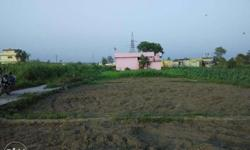 My Own 150 Sqyd Plot In Chidderwala, Dehradun,