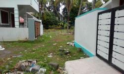 2.3,2,& 3 cent plots in palluruthy, road frontage,