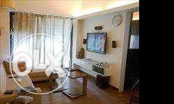 3 BHK fully furnish flat free viewing No Initial