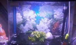 6 months old fish tank for sale