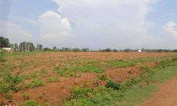 3 acres of agriculture land at near thally , Clear