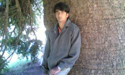 hi, i am saleem,working as an accoutant in a fmgc