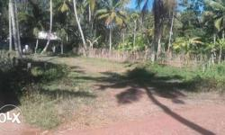 Around 8 cent land with tar road frontage for sale near