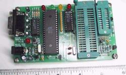 ATMEL and x51 series programmer. Not using it anymore.