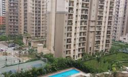 ATS 4bhk flat for sale lower floor only direct client