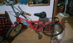 BSA bicycle two years old in good condition.