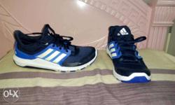 Blue-and-white Adidas Running Shoes