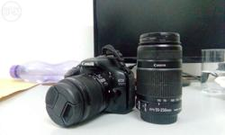 550D with kit lense and 55-250mm along with macro