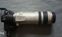 Canon EF 100-400mm f/4.5-5.6L 2577A003AA IS USM Lens,