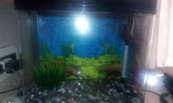 Complete fibre glass fish tank with all accessories