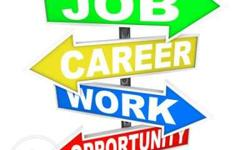 Direct walk in job requirements Mnc company opportunity