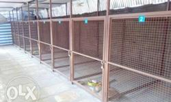 Dog hostel and pet care center with playing area net