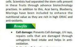 Double Stem Cell With Moringa Can
