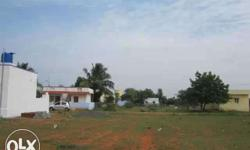DTCP Approved Cent=1,25,000 Tirupur to Kangeyam Road,