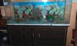 Fish Aquarium with Cupboards for sale