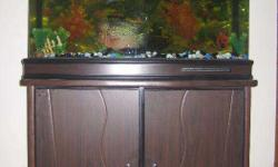 Imported Fish Tank with dimension of LBH in feet