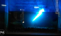 Fish tank with 10 big sharks 2 motors with filters and