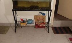 5.5feet fish tank for sale in kodichikkanahalli