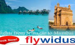 Enjoy the sights of Srinagar and modernity of Mumbai by