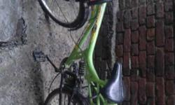 Green Street Bicycle