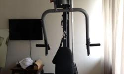 Type: Fitness Type: Free Weights g3s multi gym machine