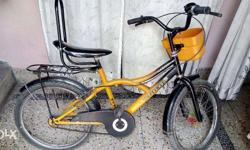 Bicycle For Young Kids in Excellent Condition almost