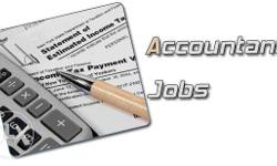 GST / Accountant job available in Sakchi should be