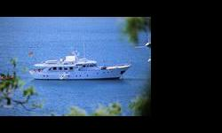 Our company provides luxury boats and yachts for rent