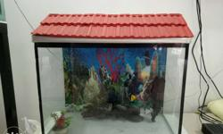one year old fish tank with cover and with light only