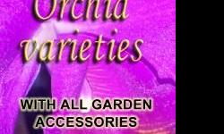 Own an orchid garden of your favourite orchid plants