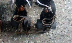 Pair Of Black Roller Skates