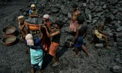 supply all types of coal like piparwar, ashoka rejects