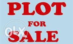 If Plots anywhere required in korba bilaspur raipur,