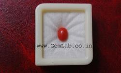 Red Coral/Moonga increases the power of Mars Planet.