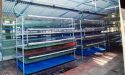 We are professional kaada cage manufacturers . We made